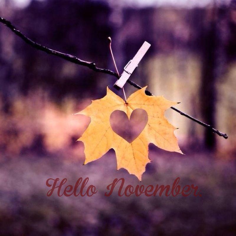just a girl hello november